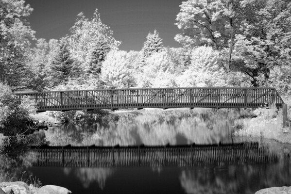 <b>Submitted By:</b> Louie Neilson <b>From:</b> Grayling <b>Description:</b> grayling city park in infrared early july 2010