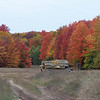 <b>Submitted By:</b> Sandra L. Albrecht <b>From:</b> Kingsley <b>Description:</b> A colorful walk along a rural road in Kingsley