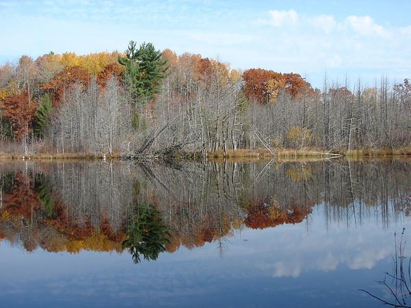 <b>Submitted By:</b> Bill Simmons <b>From:</b> Lake Ann <b>Description:</b> Mary Lake in Lake Ann.