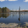 <b>Submitted By:</b> Kevin Douglas <b>From:</b> Traverse City <b>Description:</b> Early spring day on Lake Dubonnet