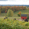 <b>Submitted By:</b> Jess Clifton <b>From:</b> Traverse City <b>Description:</b> Fall peeking through on Old Mission Peninsula