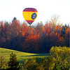 Photographer     Susan Niles<br />                          Traverse City, MI<br /> <br /> Taken at ranch near Traverse City, MI