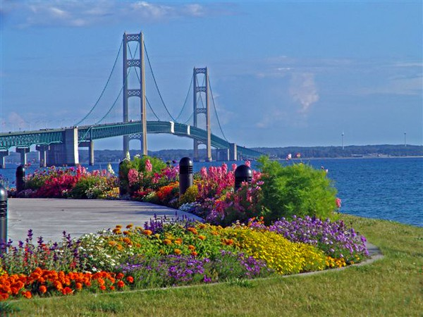Mac in Bloom – Taken 8/14/04 from north side of bridge, looking south. Photographer: Susan Nelson, Bellaire, MI