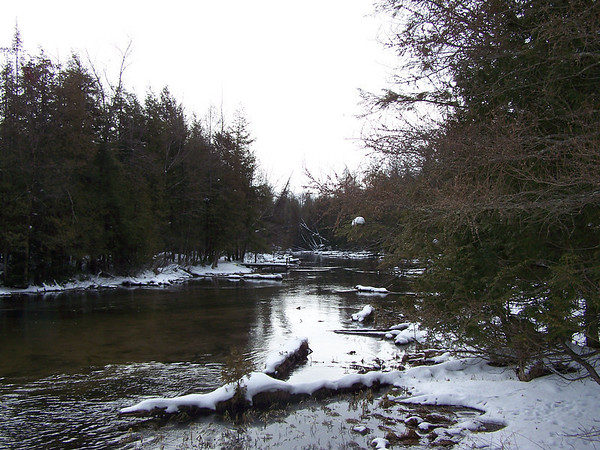<b>Submitted By:</b> Coleen Sander <b>From:</b> Mancelona <b>Description:</b> Photo take at Cedar River near Mancelona in March 08.