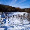 <b>Submitted By:</b> Louise Mendrala <b>From:</b> Traverse City <b>Description:</b> Grand Traverse Commons Natural Area trail on a beautiful, sunny day January 2010. We just moved up from downstate and are loving all the hills and valleys!