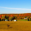 <b>Submitted By:</b> Shannon Woods <b>From:</b> Kalkaska <b>Description:</b> Fall colors Seeley Road, Kalkaska 2011