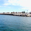 <b>Submitted By:</b> Kayla Kester <b>From:</b> Traverse City <b>Description:</b> Traverse City downtown Marina.