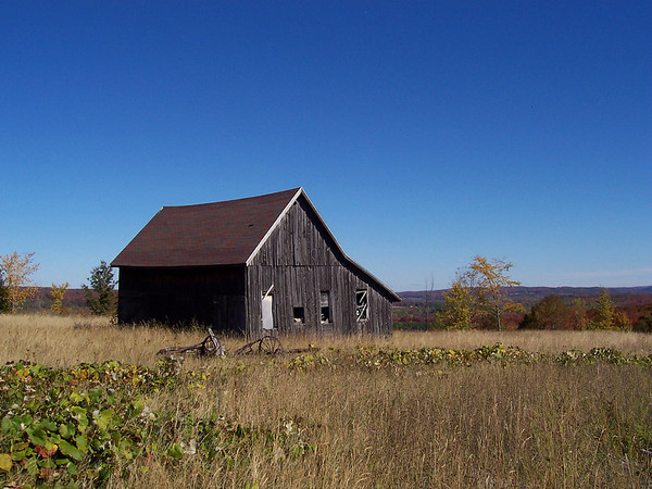 <b>Submitted By:</b> Mike Moravec <b>From:</b> Traverse City <b>Description:</b> Fall in Antrim county