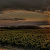 <b>Submitted By:</b> Paul James Nepote <b>From:</b> Traverse City, Michigan <b>Description:</b> Old Mission Sunset