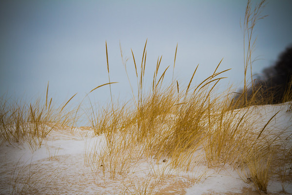 <b>Submitted By:</b> Peggy Sue Zinn <b>From:</b> Traverse City <b>Description:</b> Winter on the Sand dunes