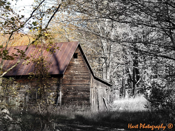 <b>Submitted By:</b> randal hart <b>From:</b> traverse city <b>Description:</b> Old barn...