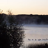 <b>Submitted By:</b> Mike Moravec <b>From:</b> Traverse City <b>Description:</b> Early morning geese in East Bay Township in August, 2005.