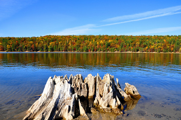<b>Submitted By:</b> Steve Nowakowski <b>From:</b> Lambertville, MI. <b>Description:</b> Brown Bridge Pond on a calm fall day in 2010, located south of Traverse City, MI.