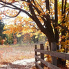 <b>Submitted By:</b> Arlene Beall <b>From:</b> Williamsburg <b>Description:</b> Trail at Deadman's Hill