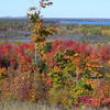 Dan Kaizer , Bendon , mi. Picture taken during october 2008 peak color . <br /> Youker Hill area , near Karlin .