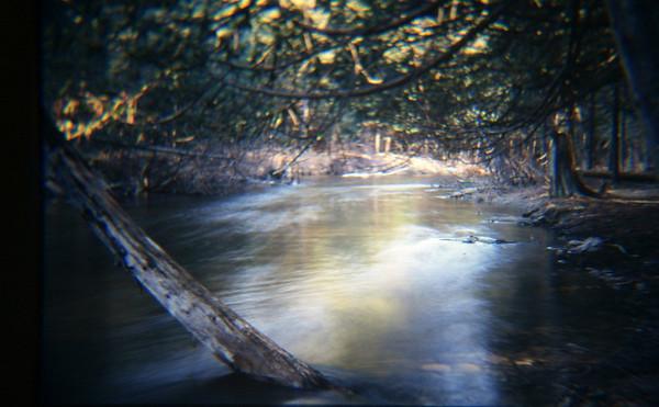 """Slow river"" - The Boardman river shot with a slow shutter speed. <br /> <br /> Bill Scott<br /> bshm@charter.net"