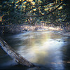 """Slow river"" - The Boardman river shot with a slow shutter speed. <br /> <br /> Bill Scott<br /> bshm@charter.net"