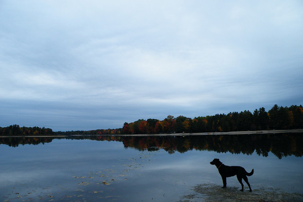 <b>Submitted By:</b> Julie Dewyer <b>From:</b> Gaylord <b>Description:</b> Looking over lake Manuka, Gaylord, Michigan