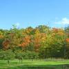Interlochen Michigan in the fall!<br /> <br /> Photographer's Name: Sherry Good<br /> Photographer's City and State: Interlochen, MI