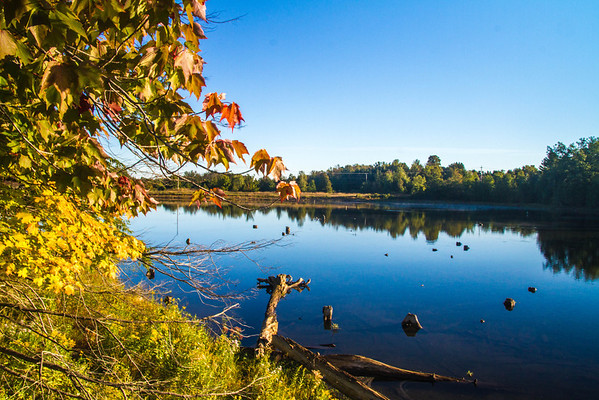 Sabin Pond<br /> <br /> Photographer's Name: peggy Sue  Zinn<br /> Photographer's City and State: Traverse City, MI