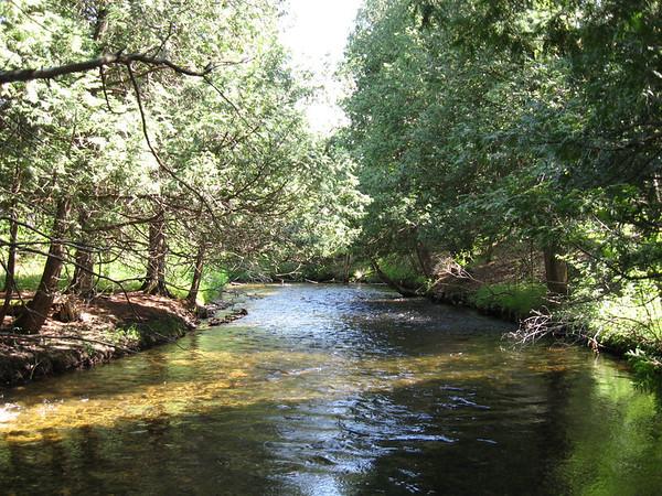 <b>Submitted By:</b> Brandon Glowacki <b>From:</b> Traverse City <b>Description:</b> Boardman river, sand lakes quiet area