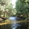 <b>Submitted By:</b> Brandon Glowacki <b>From:</b> Traverse City <b>Description:</b> Boardman river, sand lakes quiet area