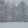 <b>Submitted By:</b> Brandon Glowacki <b>From:</b> Traverse City <b>Description:</b> Winter in northern Michigan