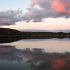 <b>Submitted By:</b> Brandon Glowacki <b>From:</b> Traverse City <b>Description:</b> Reflections on Brown Bridge Pond