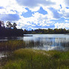 Beautiful colors around Duck Lake<br /> <br /> Photographer's Name: Sherry Good<br /> Photographer's City and State: Interlochen, MI