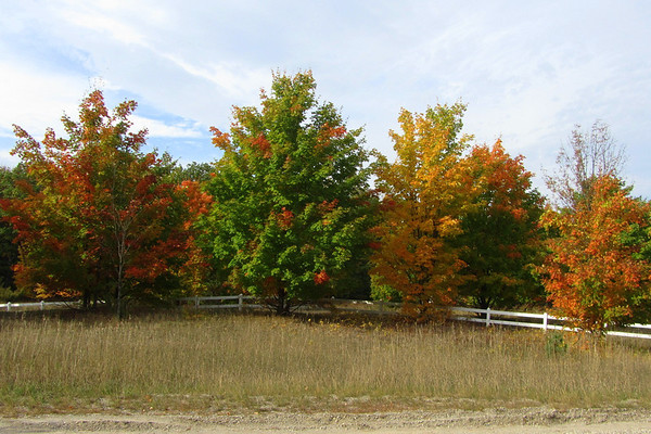 Michigan in the fall, driving down M22 from Lelalnd.<br /> <br /> Photographer's Name: Sherry Good<br /> Photographer's City and State: Interlochen, MI