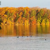 Fall morniing on Long Lake<br /> <br /> Photographer's Name: Nancy Zylstra<br /> Photographer's City and State: Traverse City, MI