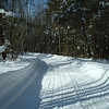 <b>Submitted By:</b> Brandon Glowacki <b>From:</b> Traverse City <b>Description:</b> Snowmobiling in northern Michigan