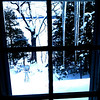 <b>Submitted By:</b> Sarah E. Fox <b>From:</b> Traverse City <b>Description:</b> This was taken the day after Christmas 2010 out my bedroom window while visiting my parents over the Holiday. Moments after I woke up, I grabbed my camera and framed this shot.  Taken over looking over Long Lake, Traverse City, Mi
