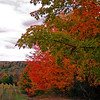 <b>Submitted By:</b> Laurie Waldo Robinson <b>From:</b> Cedar <b>Description:</b> fall in the hood