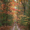 <b>Submitted By:</b> Brandon Glowacki <b>From:</b> Traverse City <b>Description:</b> Seasonal road