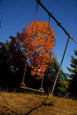 Stephen Gmeiner<br /> Grosse Pointe Farms and Rapid City, MI<br />  <br /> Pic taken on vacation property, fall colors.