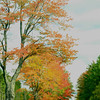 <b>Submitted By:</b> Gwen Rusnell <b>From:</b> Mancelona <b>Description:</b> Taken 9. 26.12 on Seeley Rd in Kalkaska, Mi. Fall color are beginning to shine!!