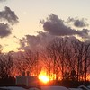 The end of a warm winter day 12/26/16<br /> <br /> Photographer's Name: Holly Knibbs<br /> Photographer's City and State: Traverse City, MI