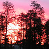 This sunrise photo was taken in March 2009 right in Kalkaska, MI. I took it <br /> with my digital camera off my front porch.<br /> <br /> Jennifer Jackman<br /> Kalkaska, MI