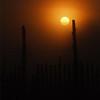 <b>Submitted By:</b> david skop <b>From:</b> Boyne Falls <b>Description:</b> Bird on fence on a foggy morning near Boyne Falls