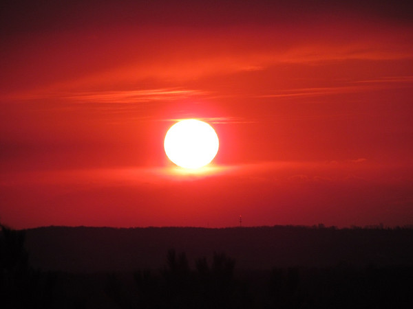 <b>Submitted By:</b> Mike Tinkle <b>From:</b> Kalkaska <b>Description:</b> Good Morning!