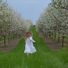 Photo was taken by Sarah Morio of her daughter on a Leelanau county cherry orchard.<br /> <br /> Photographer's Name: Sarah Morio<br /> Photographer's City and State: traverse city, MI