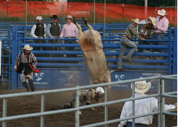 Traverse City Area World Championship Rodeo - Buckley MI - Bull Riding<br /> <br /> Photographer's Name: Kathryn Bandstra<br /> Photographer's City and State: Traverse City, MI