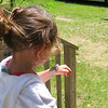 <b>Submitted By:</b> Marie Ann Cornell <b>From:</b> Traverse City, Michigan <b>Description:</b> Girl and her Butterfly. Taken at Old Mission July of 2009