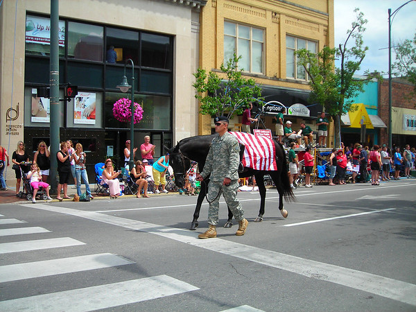 <b>Submitted By:</b> Christy Crawford <b>From:</b> Lake Ann <b>Description:</b> Fallen Soldiers - Cherry Royale Parade 2009