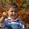 4 year old Nolan Sparks enjoying fall beauty<br /> <br /> Photographer's Name: Natalie Okerson-Sparks<br /> Photographer's City and State: Traverse City, MI