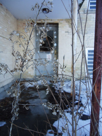 <b>Submitted By:</b> Maggie Jo sherman <b>From:</b> Traverse City <b>Description:</b> this was taken at the old state hospital, i took a picture at this same spot in the summer time and i came back for another one in the winter.