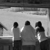 <b>Submitted By:</b> Charlie Stairs <b>From:</b> Empire <b>Description:</b> Looking out the barn window at Thorenson farm
