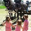 <b>Submitted By:</b> Angela Marie (Campbell) Sheffer <b>From:</b> Traverse City <b>Description:</b> Father's Day 2009 Family and Friends Remember their Father/Grandfather/Great Grandfather/Friend 'Butch' Sheffer and wife Virgina on the old Homestead with the Draft horses Butch raised. In this photo: horses L to R Butch and Sonny, girls: Ella Flores, Hailey Anderson, and Ahna Campbell