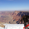 <b>Submitted By:</b> Glenn Socia <b>From:</b> Dewey Arizona - Interlochen Mi. <b>Description:</b> My dog Deuce taking in the Grand Canyon.  He would stop and just look.  His first trip there.